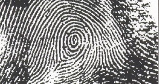Peacock's Eye - Finger Print