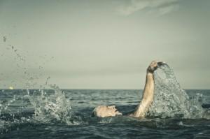 Man swimming on back
