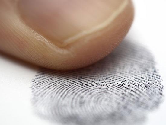 Chỉ bằng việc kiểm tra vân tay người ta có thể phát hiện người lái xe có sử dụng ma túy hay không. (Ảnh: Gizmodo)